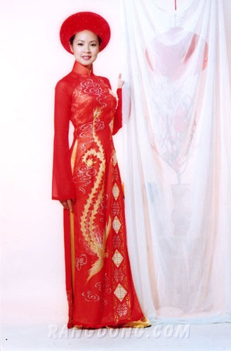 ideas for my my ao dai (vietnamese gown)