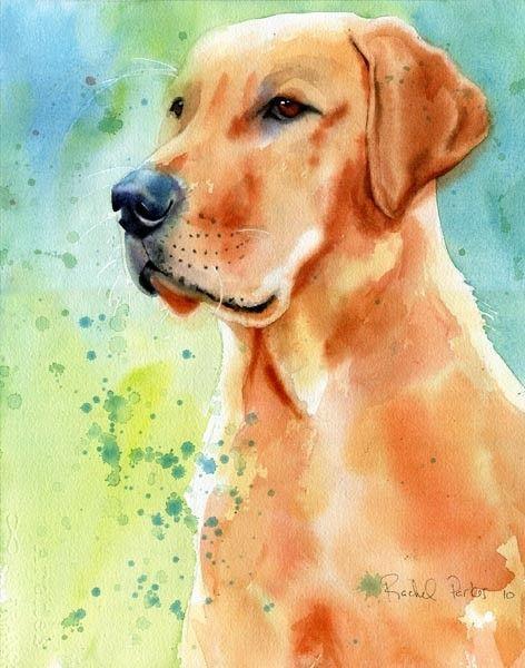 Yellow Labrador Lab Art Original painting dog Pet by #pet boy #Cute pet #pet girl