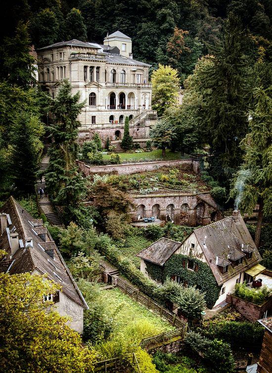 Heidelberg hillside