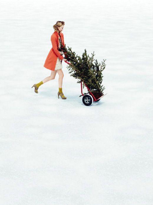 Christmas to go
