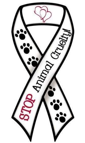 Stop Animal Cruelty Ribbon.