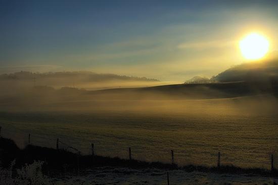 A velvet morning in West Virginia