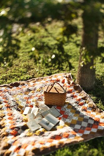 Picnic and books.