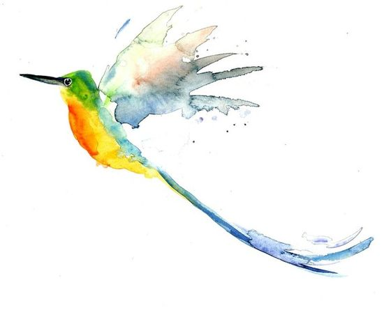 Violet tailed HUMMINGBIRD by DIMDI Original watercolour by dimdi