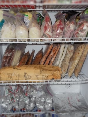 Freezer storage. Freeze flat, then stand up next day. Flat bags/no air keep food fresh longer, store compactly and you can see what you are getting. Shred cooked pork and chicken for handy use.