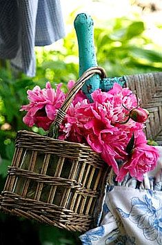 Flowers + Baskets