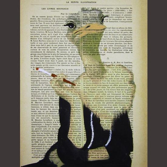 Jetset ostrich