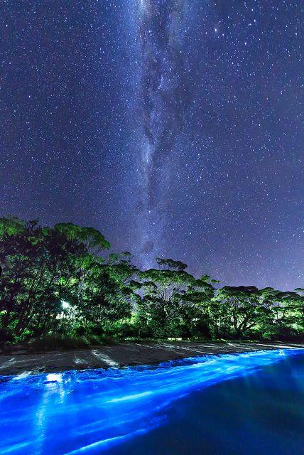 The Milky Way over bioluminescent plankton on an Australian beach