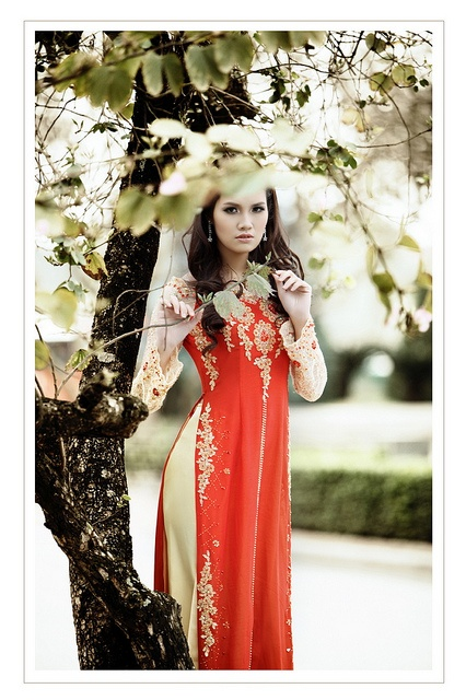 yellow and red ao dai