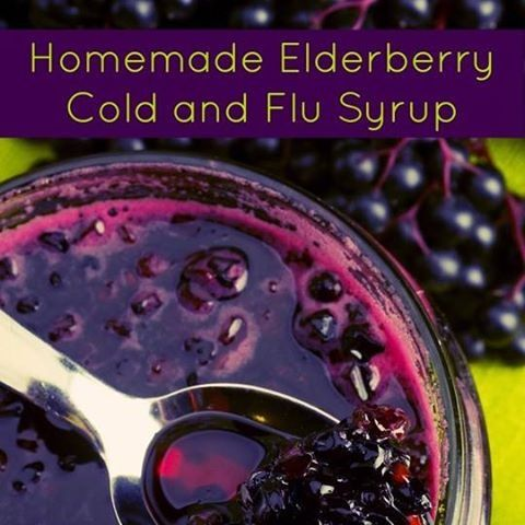Simple Tips on How to Make Homemade Elderberry Syrup for Colds and #health guide #better health naturally #better health solutions #organic health