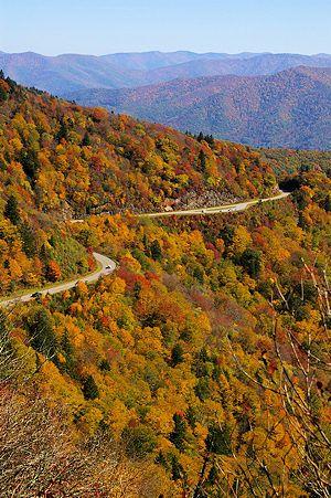 fall foliage in the blue ridge mountains