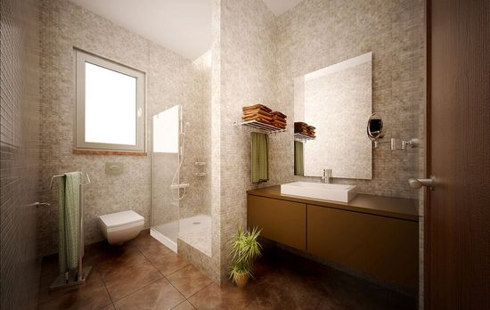 Modern Bathroom Design with Brown and Beige Vibrant Tones