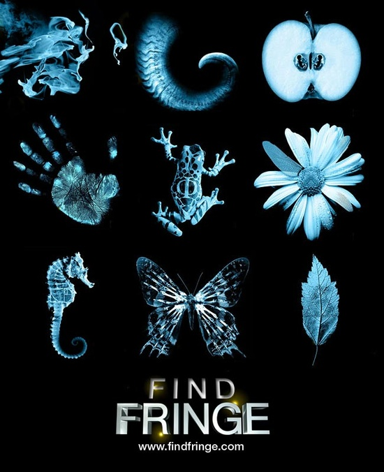 Fringe openings.