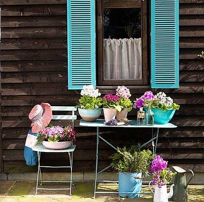 Blue shutters and flowers.
