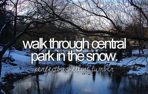 Bucket List: Walk through central park in the snow