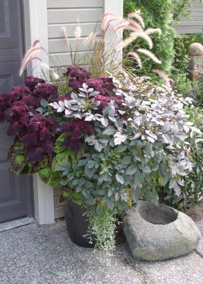 container garden - love the rocked out bird bath....or pet water bowl? :-) I love the colors, too!