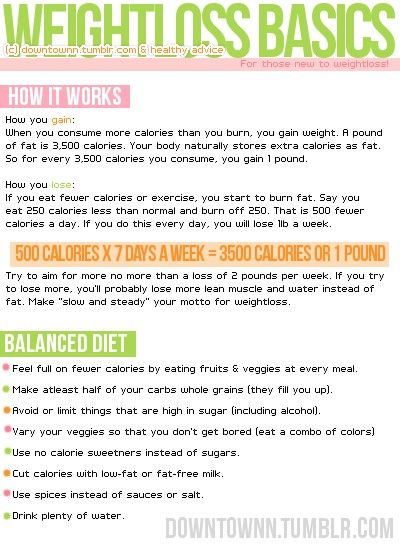 Weightloss Basics
