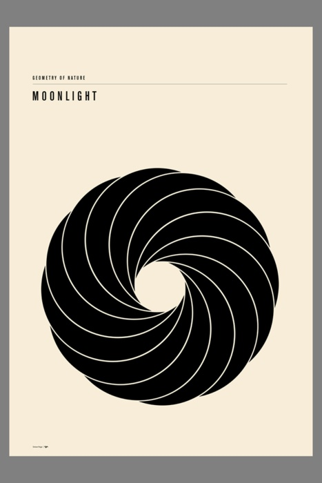 The geometry of nature - moonlight available from Inprnt.Click on image for more details.