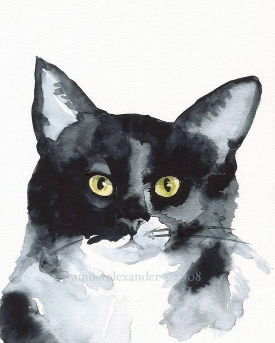 """Cat print """"The Stare"""" by AmberAlexander of Etsy"""