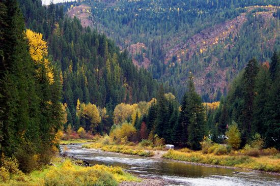 Spring Creek area along the St. Joe River Scenic Byway between St. Maries and Avery.