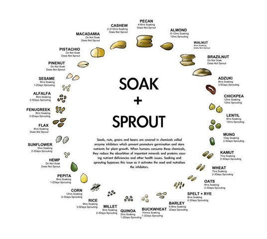 Healthy  Foods to eat:  Soak and Sprout!  :)