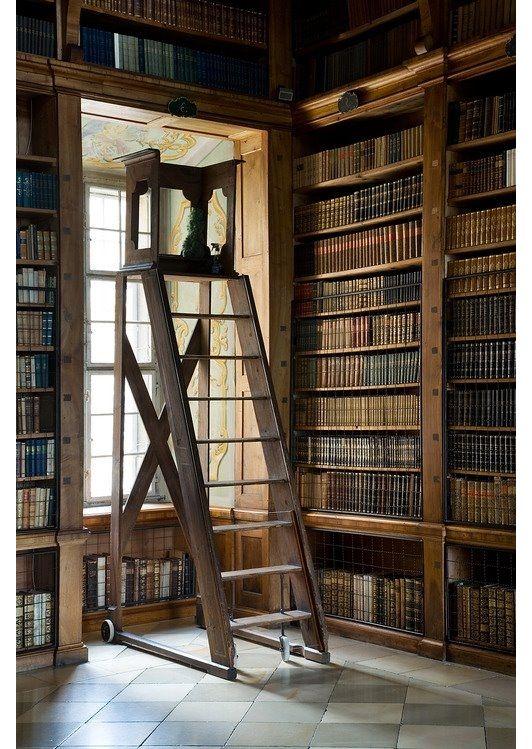 Library design - Home and Garden Design Ideas