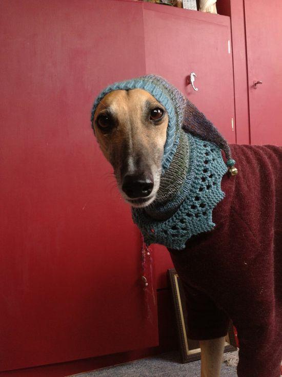 Snood/neck warmer/hat for Greyhound or Lurcher dog von PepperKnitz