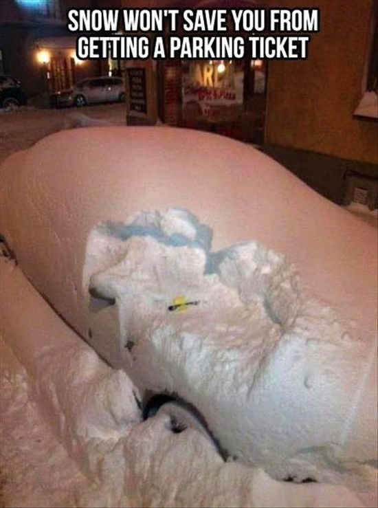 funny quotes about snow smart