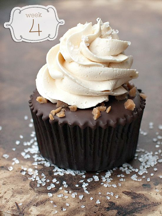 Salted Caramel Chocolate Cupcakes - Cupcake Daily Blog - Best Cupcake Recipes .. one happy bite at a time! Chocolate cupcake recipes, cupcak...