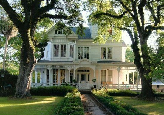 big trees white house