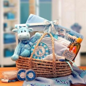 New Baby Blue Carrier Gift Basket