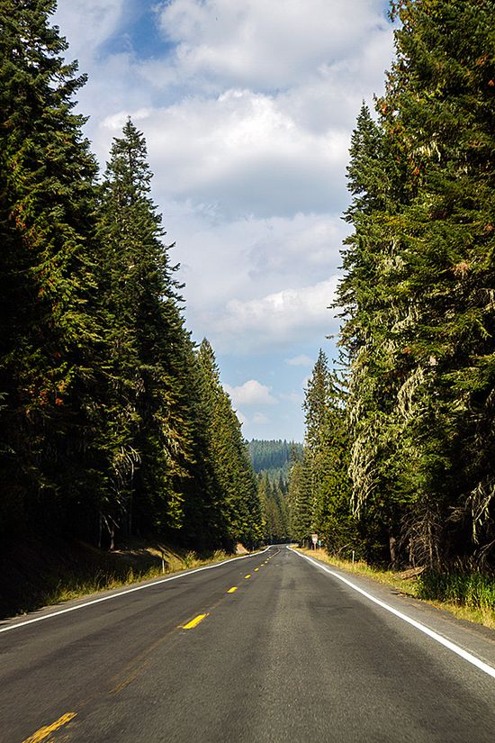 The White Pine Scenic Byway in #idaho