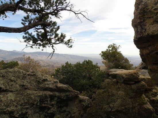 scenic view - Mt