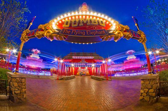 Double Dumbo  photographer: Tom Brickerlocation: New Fantasyland