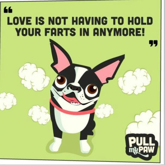 Love is not having to hold your farts in anymore
