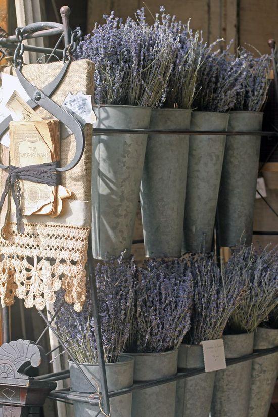 pretty lavender pots...
