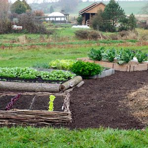 Five Ways to Make Raised Beds