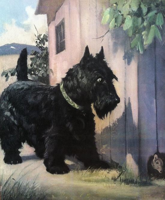 Scottish Terrier dog Illustration by Wesley Dennis  by RoxyRani, $7.00