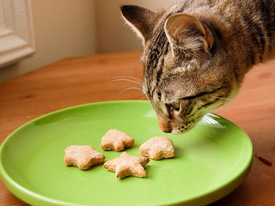How to Make All-Natural Pet Treats