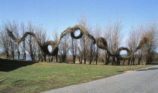Natural Art Installation