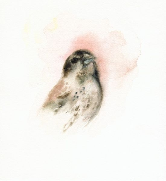 love this watercolor. artist has a series of sweet birds like this. several framed would be super cute for a nursery.