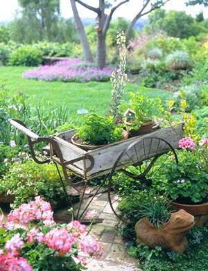 cottage garden with old wheel barrel of flowers