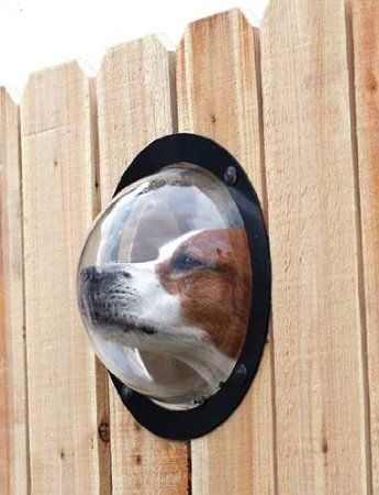 Give your dog a window to the world with the PetPeek Fence Window.