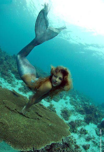 #mermaid #sea #ocean