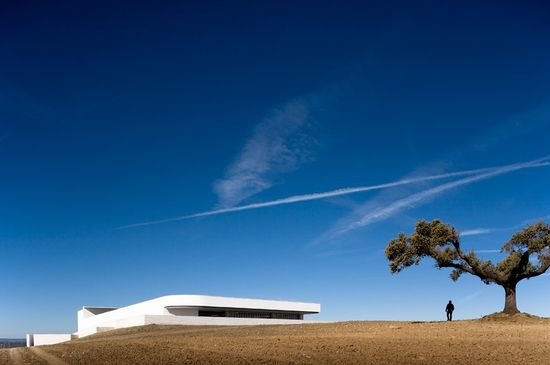 Mayor Winery / Alvaro Siza © Fernando Guerra