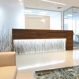 Glowing Varia Birch Grove reception desk and feature wall.    #design #walls #partitions #organic #dubai #corportate