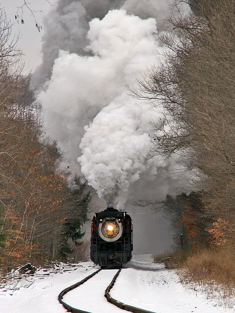 """Ice Train '08 by Bo Gray on Flickr. """"Steamtown's """"Ice Train"""" excursion blasts through Elmhurst, PA on its way to Tobyhanna on a chilly Saturday."""""""