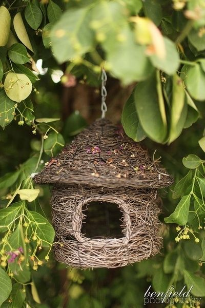 flowersgardenlove:    bird house Flowers Garden Love
