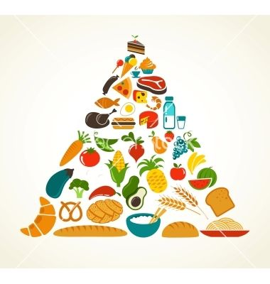 Health food pyramid vector - by ma_rish on VectorStock®