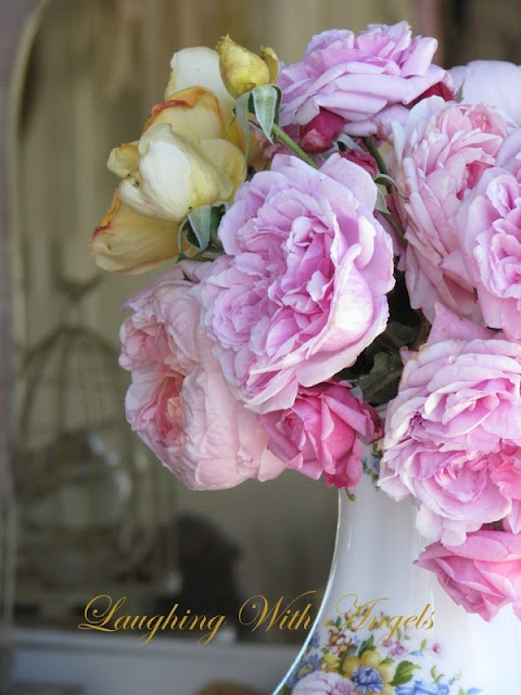 I love English garden roses.